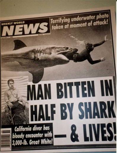 shark attack injuries